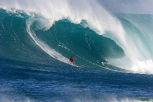 surfboy_252